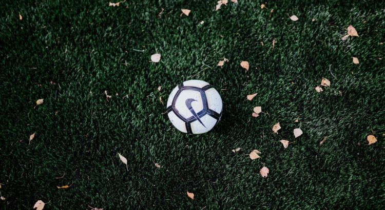 A soccer ball on a field with dried leaves.